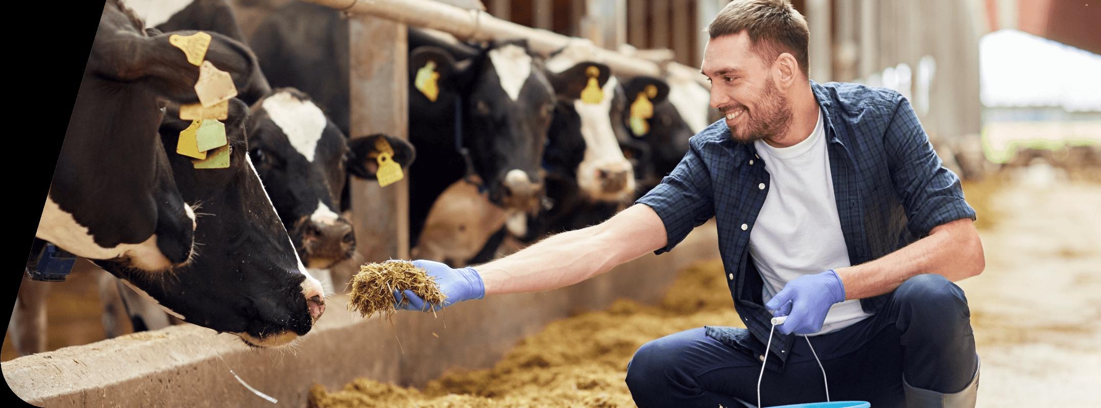 HerdApp Benefits